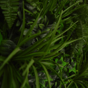 Instant Green Wall